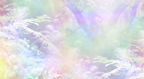 Rainbow Woodland Scene Background. Rainbow colored woodland with delicate ferns and sunshine creating a magical ethereal angelic background scene royalty free stock images