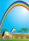 Rainbow and zebra Royalty Free Stock Photo