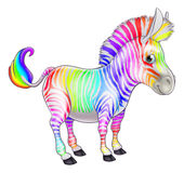 Rainbow Zebra Stock Photography