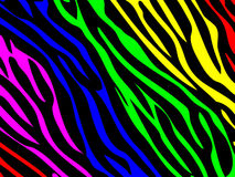 Rainbow zebra print Royalty Free Stock Photos