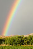 Rainbow zoom over grape vineyards Stock Photos