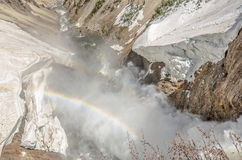 Rainbows Over the Yellowstone River. Bird's eye view of the Lower Falls of the Yellowstone River in the Grand Canyon of the Yellowstone in Yellowstone National royalty free stock images