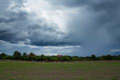 Rainclouds or Nimbus Royalty Free Stock Photo