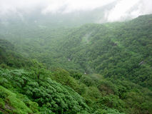 Rainclouds over forest. Scenic view of monsoon rainclouds over green forested valley Royalty Free Stock Image