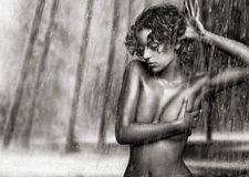 Raindancer Stock Photography