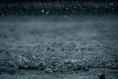 Rainddaling Stock Foto