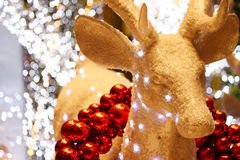Raindeer dourado foto de stock royalty free
