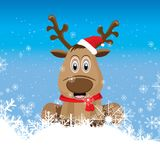 The Raindeer is sitting on the snow in the blue blackground. Stock Images