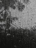 raindrop photo stock