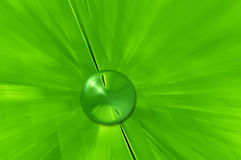 Raindrop. On the green leaf as a background Royalty Free Stock Images