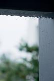 raindrop Стоковая Фотография RF