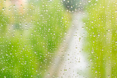 raindrop Zdjęcie Stock