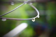 raindrop Στοκ Εικόνες