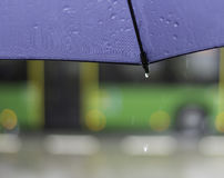 Raindrop. Open umbrella with raindrops seen from below, blurred bus in the background Royalty Free Stock Photos