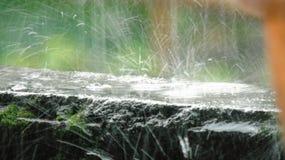 Raindrop Royalty Free Stock Photo