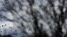 Raindrop. Window covered by raindrops from the outside Stock Images