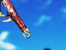 Raindrop z odbiciem Zdjęcia Stock