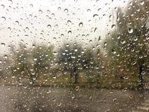 raindrops βροχή Στοκ Εικόνα