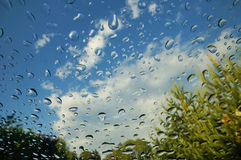 Raindrops на лобовом стекле Стоковые Изображения RF