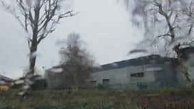 Raindrops на окне сток-видео