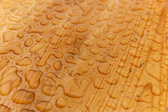 raindrops ставят деревянное на обсуждение Стоковые Изображения