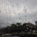 raindrops Fotografering för Bildbyråer
