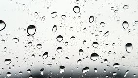 Free Raindrops Stock Photo - 106827760