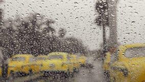 raindrops photos libres de droits