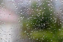 raindrops arkivfoton