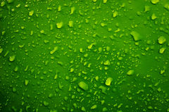 Raindrops. On the green background Royalty Free Stock Image