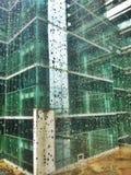 raindrops Royaltyfri Foto