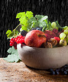 Raindrops on autumn fruits Royalty Free Stock Photography