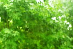 Raindrops on blurred green background Stock Image