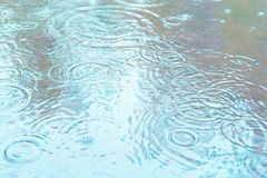 Raindrops fall into a puddle. Rainy weather. royalty free stock image