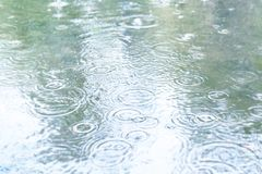 Raindrops fall into a puddle. royalty free stock photography