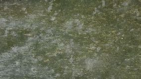 Raindrops falling on cement. Large raindrops sparkling while falling on flooded cement patio stock video