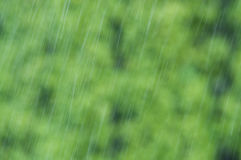 Raindrops falling down on blurry background Royalty Free Stock Image