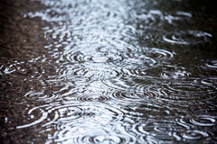 Raindrops falling in water Royalty Free Stock Images