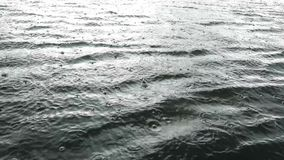 Raindrops falling on water surface stock video