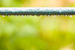 Raindrops on a fence in city park Stock Image