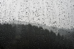 Raindrops on glass. On the background of the forest Royalty Free Stock Photo
