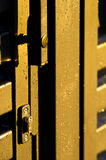 Raindrops on gold gate Royalty Free Stock Photo