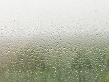 Raindrops on home window pane. Rain drops on home window pane with green forest and grey sky background stock photography