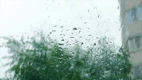 Raindrops na nadokiennym szkle, budynki w tle Widok od okno dom, pogoda sztormowa, silna zdjęcie wideo