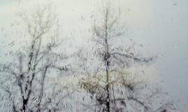Raindrops na okno z drzewami Outside w tle zdjęcie royalty free
