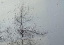 Raindrops na okno z drzewem Outside w tle zdjęcie royalty free