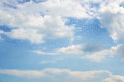 Raindrops på ett fönster Royaltyfri Foto