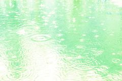 Raindrops on a puddle on a rainy day. Soft blue tone. stock photography