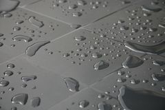 Raindrops. Stock Images