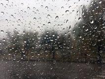 raindrops regna Arkivfoto